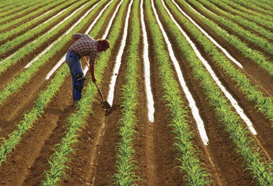 Σεμινάρια σε θέματα γεωργίας κτηνοτροφίας για νέους