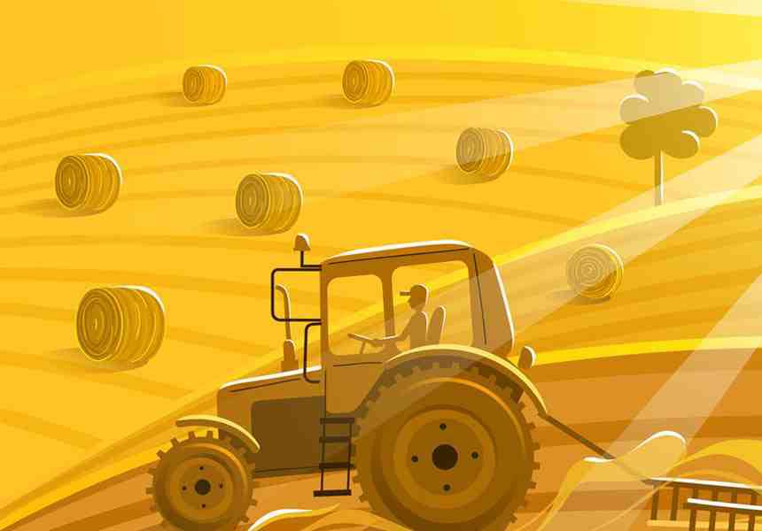 Σεμινάρια αγροτικού μάρκετινγκ από την Αγρεπιχειρείν